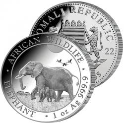 100 Shillings Éléphant