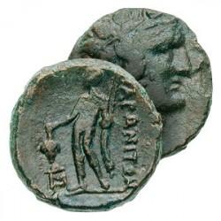 La Monnaie Antique du Dieu du Vin