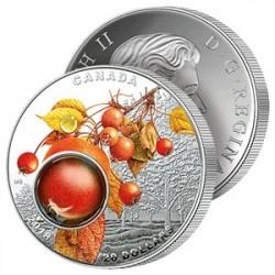 20$ Argent Rosée du Matin