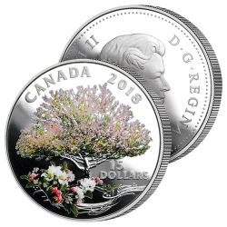 15 Dollars Pommier en Fleurs