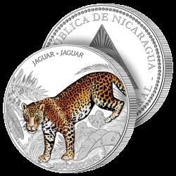 Le Premier Jaguar du Nicaragua