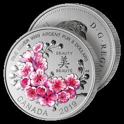 8$ Cerisiers en Fleurs
