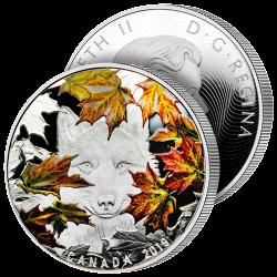 30$ Le Loup Roi des Forêts