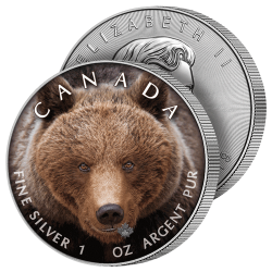 5 Dollars Argent Ours Grizzly