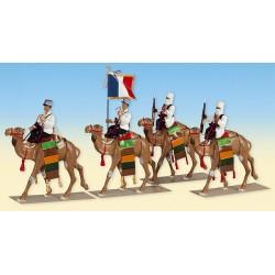 La Compagnie Méhariste d'Algérie Française