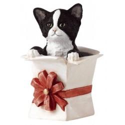 Parfait Cadeau