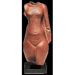 Le Grand Drapé de Néfertiti
