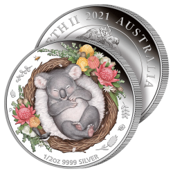 Petit Koala Rêveur